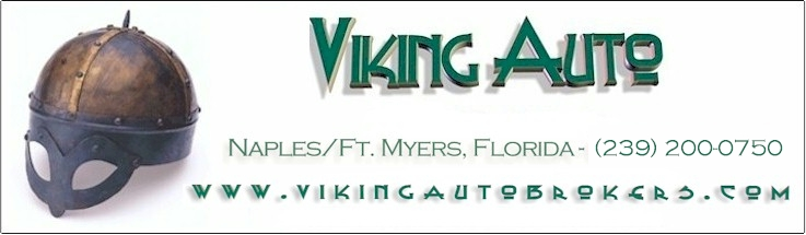 Viking Automotive Inc