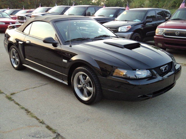 2003 ford mustang gt deluxe for sale in cincinnati oh stock 10765. Black Bedroom Furniture Sets. Home Design Ideas