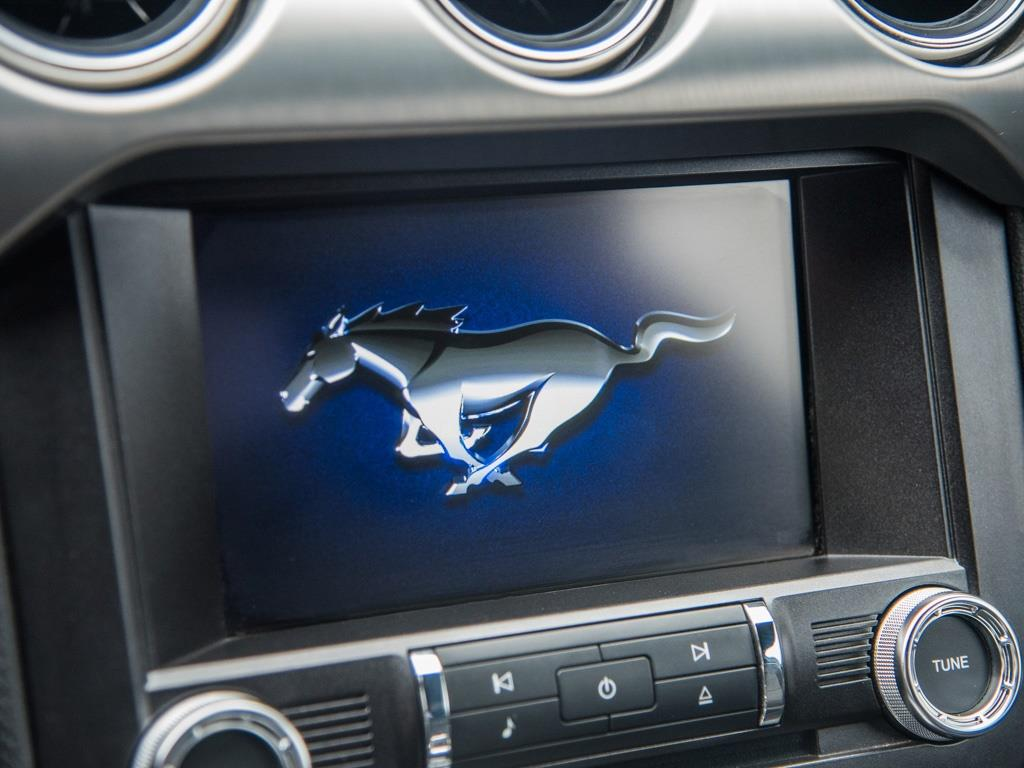 "2015 Ford Mustang GT Premium 50th Anniversary  ""Twin Turbo "" - Photo 17 - Springfield, MO 65802"