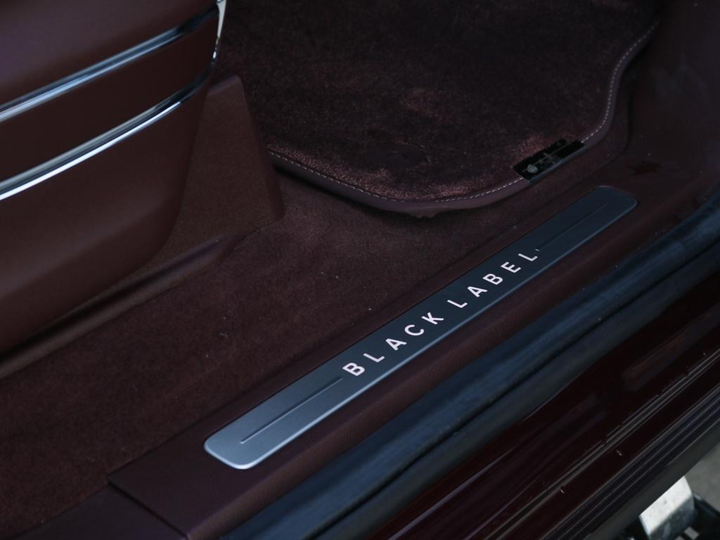 2018 Lincoln Navigator L Black Label - Photo 19 - Springfield, MO 65802