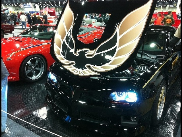2011 Pontiac Trans Am Hurst Edition Concept with T-Tops - Photo 38 - , TX 77041