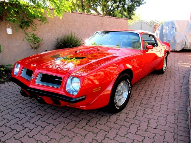 Free Carfax Check >> 1974 Pontiac Trans Am SD 455