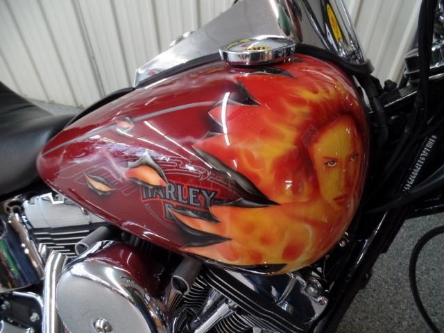 2007 Harley-Davidson Softail Custom - Photo 9 - Kingman, KS 67068