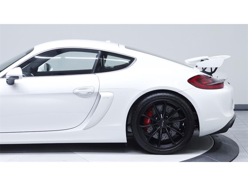 2016 Porsche Cayman GT4 - Photo 49 - Nashville, TN 37217