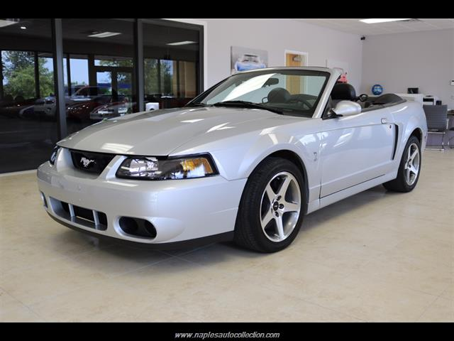 2003 ford mustang svt cobra for sale in naples fl stock 328868. Black Bedroom Furniture Sets. Home Design Ideas