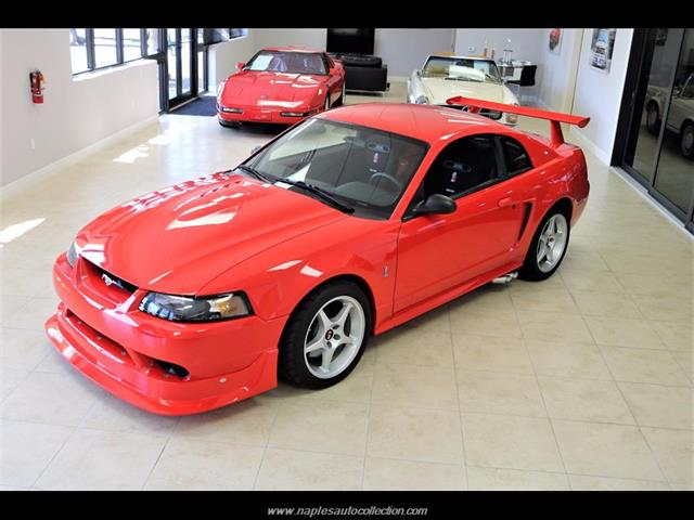 2000 ford mustang svt cobra r for sale in naples fl stock 223209. Black Bedroom Furniture Sets. Home Design Ideas